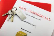 Modèle de bail commercial - Loi Pinel / Macron