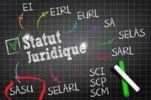 Statuts de SASU