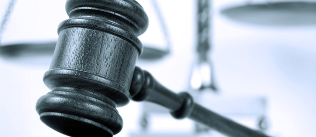 EIRL : le Conseil constitutionnel valide le projet de loi