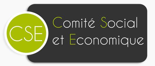 Guide CSE (Comité social économique)