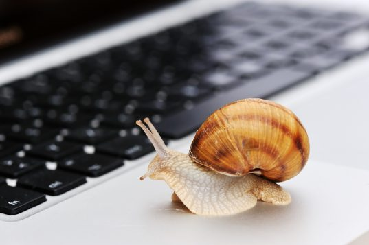 Fibre optique : 23 % seulement des PME sont connectées